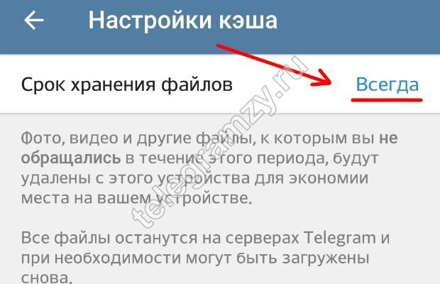 Хранение файлов в Телеграмм