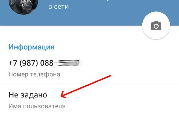 Имя пользователя в Телеграмм