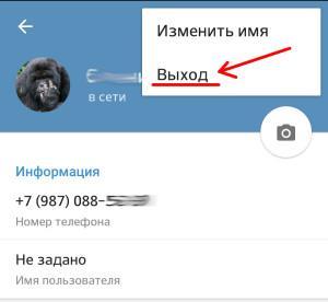 Выходим и заходим в Телеграмм