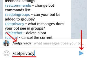 Задаем команду setprivacy для BotFather в Телеграмм